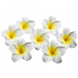 10pcs-font-b-White-b-font-Plumeria-Hawaiian-Foam-font-b-Frangipani-b-font-Flower-For