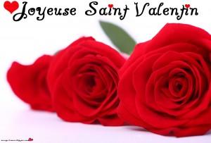 joyeuse-saint-valentin-fleur-0003