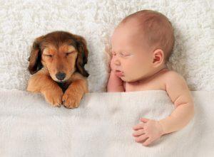 comment-coucher-bebe